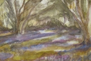 11-071 - Bluebells at Brook House - Line & W/colour on Paper - £45.00 - Mounted 32x40cm