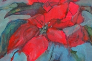 13-024 - Poinsettia - £137 - Mixed Media on W/C Paper - White mount in white frame 45x35cm