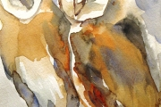 14-014 - Barn Owls - SOLD