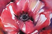 14-029 - Poppy - SOLD