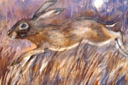 15-042 - Harvest Hare - 	£135 - Watercolour on W/C Paper - Mounted 45x35cm in Black Frame