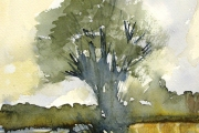 160-032 - By the Cornfield - £67.50 - Watercolour	on W/C Paper - Mounted	35x28cm